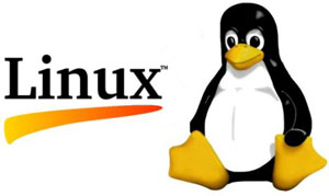 ITandSociety - Linux operating system